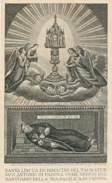 Holy card with image of corpus of St. Anthony preserved in the Basilica of St. Anthony in Padua