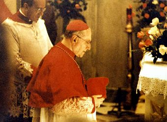 The Pope in Red